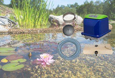 Teich mit unseren beliebten Produkten wie Verdichter