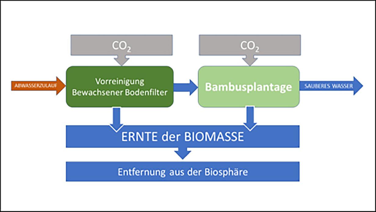 Schema einer naturnahen dezentralen Abwasserreinigungsanlage zur CO2-Enrfernung aus der Biosphäre