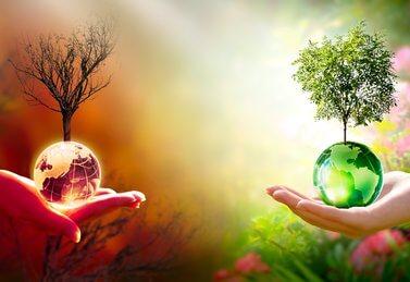 Weltumwelttag: Die Welt auf Händen tragen